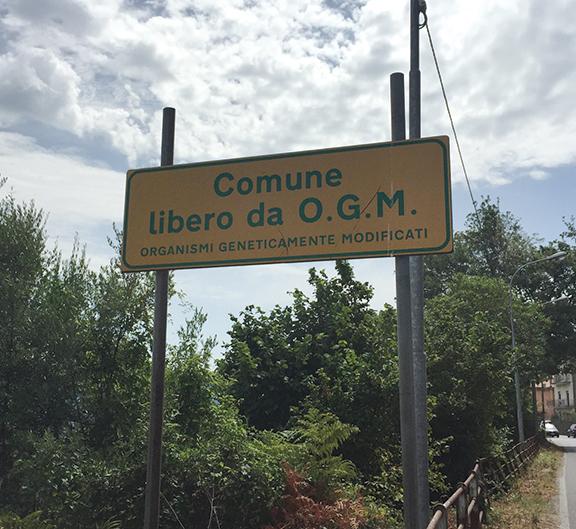 NO GMO sign in Cilento